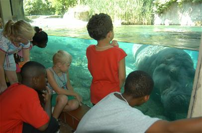 Children watching for Hippos at the zoo