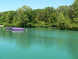 Pearson Metropark Paddleboats